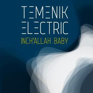 Temenik_Electric