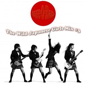 The wild japanese girls mix #3