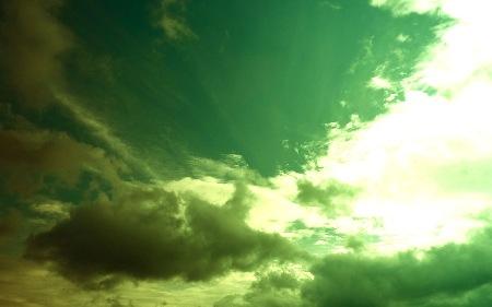Mixamorphoses - Décembre 2009