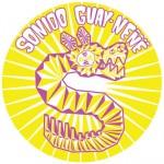 sonido-guayWEB