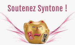 soutien-syntone-cat-1-1