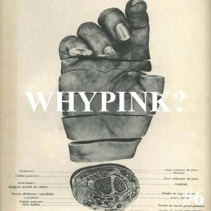 Whypink #6